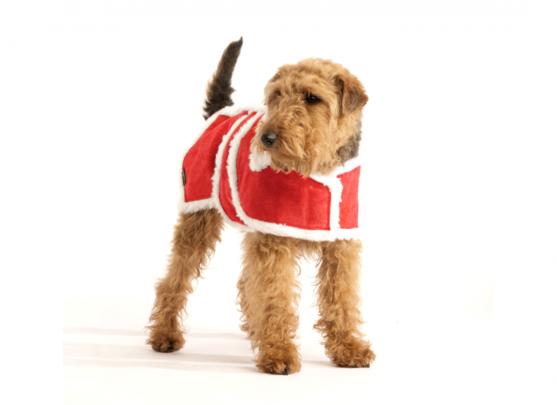 Red-Wool-Dog-Christmas-Coat-22